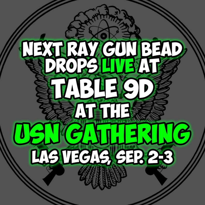 Ray Gun Division at the USN Gathering!
